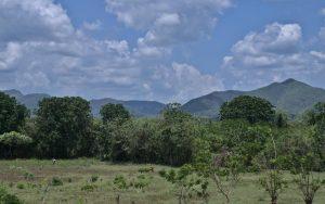 Sierra del Rosario Cuba Cuba